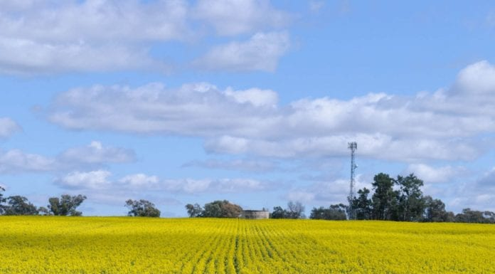 Mobility Fund II rural carriers broadband